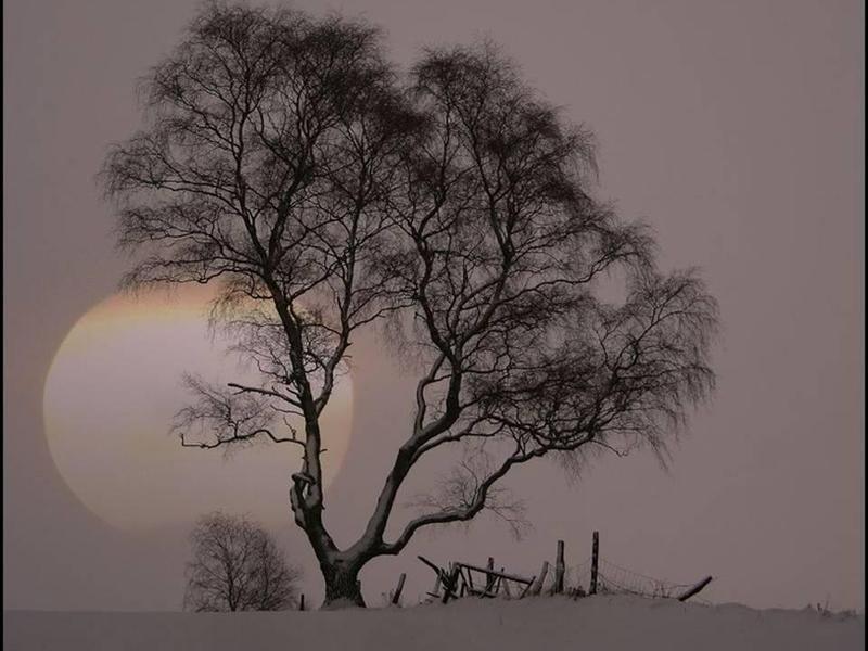 Désert. dans Liens lune-hiver